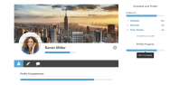 You Can Display Profile Progress Directly In The Profile, Via Widgets Or Using Shortcodes